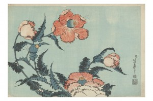 「芥子」 William Sturgis Bigelow Collection